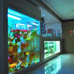 Дизайн интерьера магазина цветов